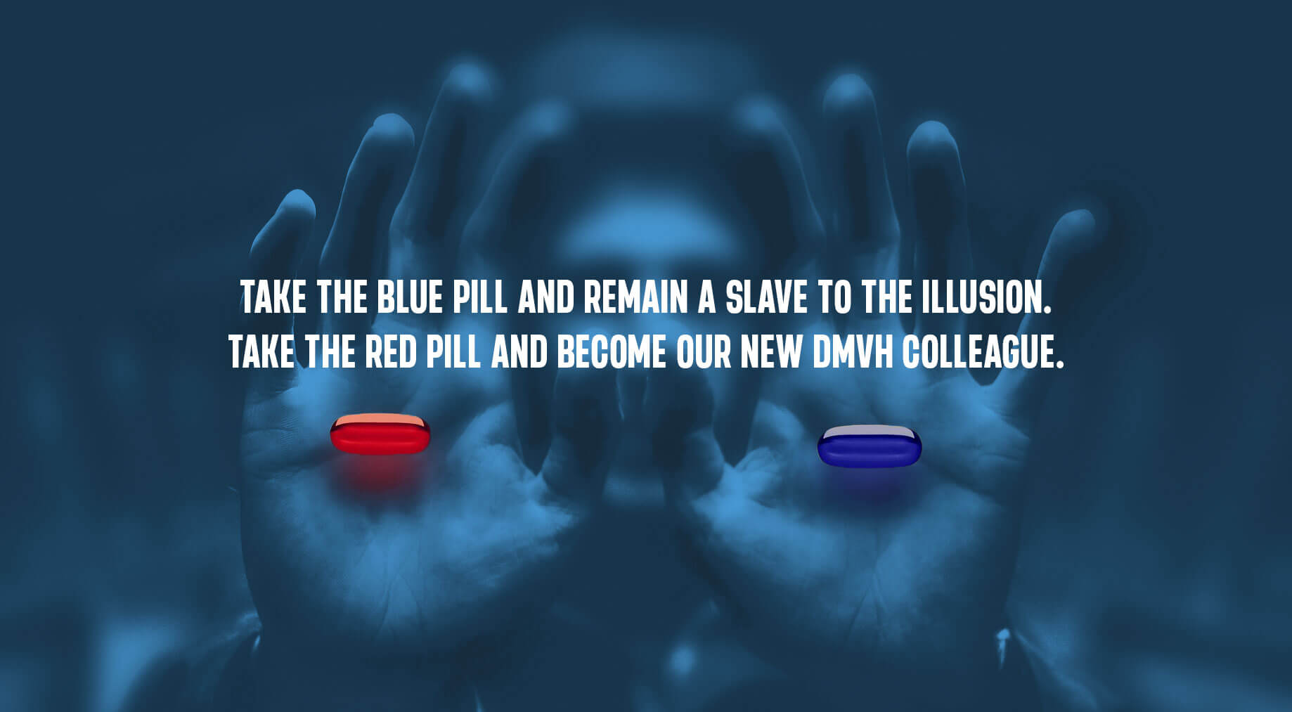 Take the red pill and become our colleague